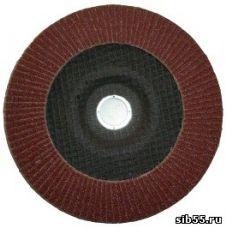 Круг лепестковый торцевой КЛТ 180х22 Р 80 (№20) тип 1 Луга